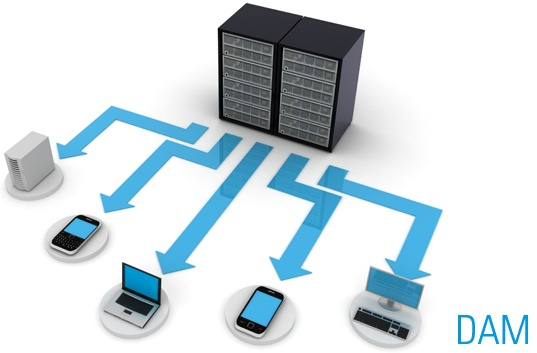 Digital-Asset-management-DAM-document-management.jpg