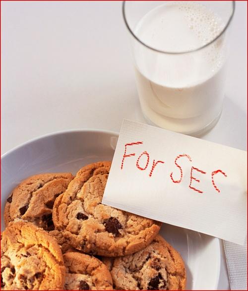 seccookies.jpg